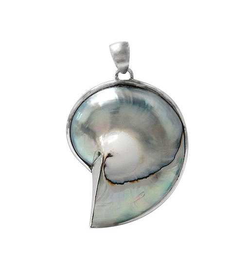 Silver Shell Pendant, Sterling Silver